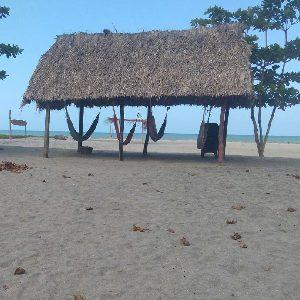 Tay-beach-hamacas